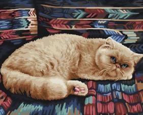 Картина по номерам 40х50. Задумчивый кот.