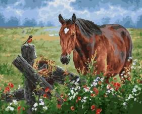 Картина по номерам 40Х50 Лошадь в поле.