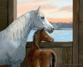 Картина по номерам. Лошадь с жеребенком. 40*50