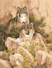 Картина по номерам 40Х50 Пара волков.