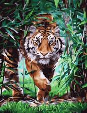 Картина по номерам 40Х50см Тигр на охоте.