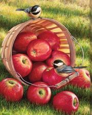 Картина по номерам 40Х50 Яблоки в корзине.